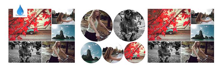 Los 5 mejores plugins para crear galerías de imágenes en WordPress